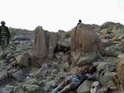حصيلة موجعة للحوثيين .. مصرع أكثر من 350 خلال الساعات الماضية غرب مأرب
